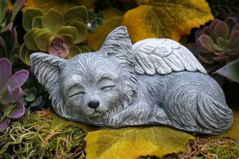 Chihuahua Garden Statue by Chihuahua Statue Haired Chihuahua Coat Chi
