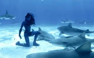 Mermaid Real Life Shark