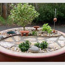 August  2011  The Mini Garden Guru From Twogreenthumbscom