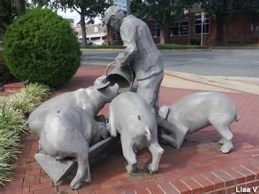 falls church va man  pigs
