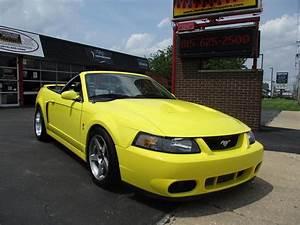 2003 Ford Mustang SVT Cobra for Sale | ClassicCars.com | CC-1104113