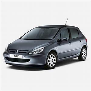 Additif Fap Peugeot : pompe additif 307 hdi ~ Medecine-chirurgie-esthetiques.com Avis de Voitures