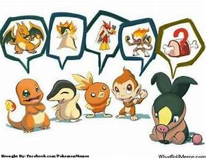 poor tepig can't remember its last evolved form poor poor ...
