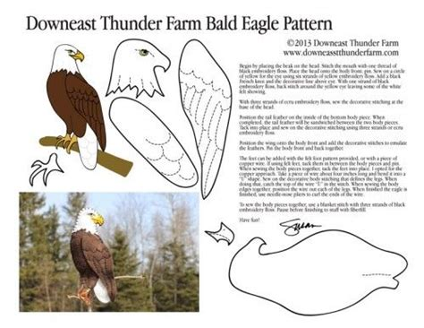 bald eagle template bald eagle pic printables patterns templates