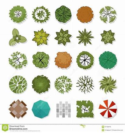 Landscape Elements Vector Illustration Architecture Landscaping Drawing