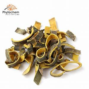 Phellodendron Bark Extract Supplement Efficient Benefits For Anti