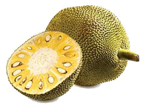 Fruits exotiques d Asie Voyage à Bali en Indonésie
