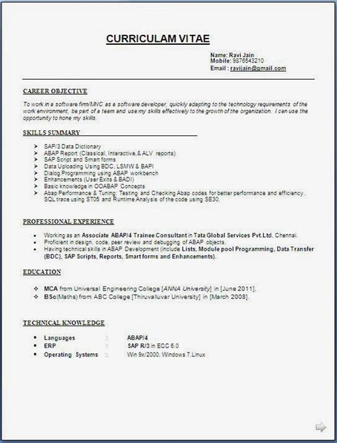 Best Resume For Sap Abap Fresher by Sap Abap Developer Resume Format Yourmomhatesthis