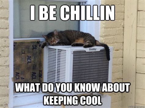 Keep Cool Meme - i be chillin what do you know about keeping cool cool cat quickmeme