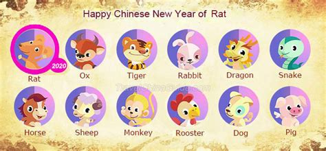 facts chinese year fun facts kids