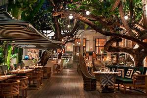 Where to Eat in Miami Now – Fodors Travel Guide