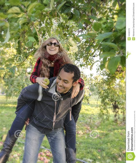 Attractive Couple Apple Picking On A First Date Stock