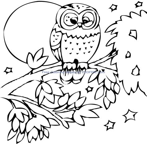 zoo coloring pages    clipartmag