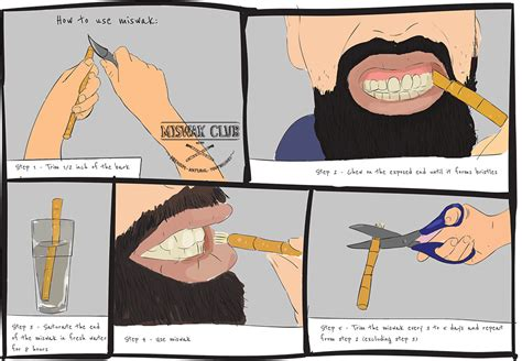 how to use miswak the simple guide
