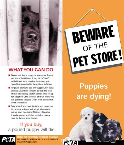 beware   pet store stop puppy mills campaigns