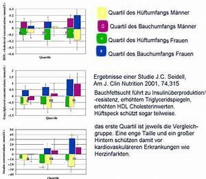 Bmi Richtig Berechnen : bmi fettanteil m nner ~ Themetempest.com Abrechnung