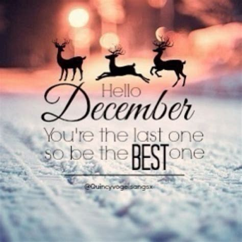 Hello December Quotes With Beautiful Quotesgram. Quotes About Love God. Beautiful Quotes Of Allah. Bible Quotes Usury. Girl Quotes About Not Being Perfect. Nature Creation Quotes. Sad Joker Quotes. Family Quotes Got. Girl Judging Quotes