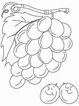 Grapes Coloring Pages Grape Sour Printable Fruits Sheets Always Colouring Bestcoloringpages Vegetables Para Recommended Popular sketch template