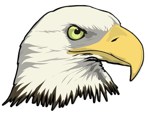 bald eagle template bald eagle outline clipart best