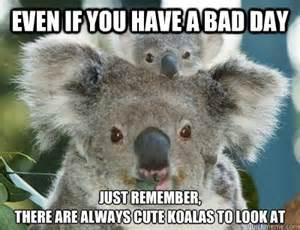 Having a Bad Day Memes Funny