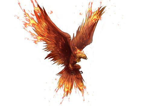 phoenix fantasy art fenix bird card wallpapers