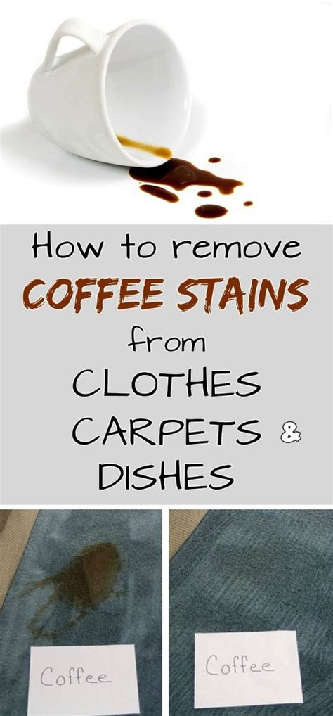 But it's a little more difficult to be fully relaxed when you've got stains on your carpet that you'd rather do without. How to remove coffee stains from clothes, carpets and dishes | Coffee stain removal, Coffee ...
