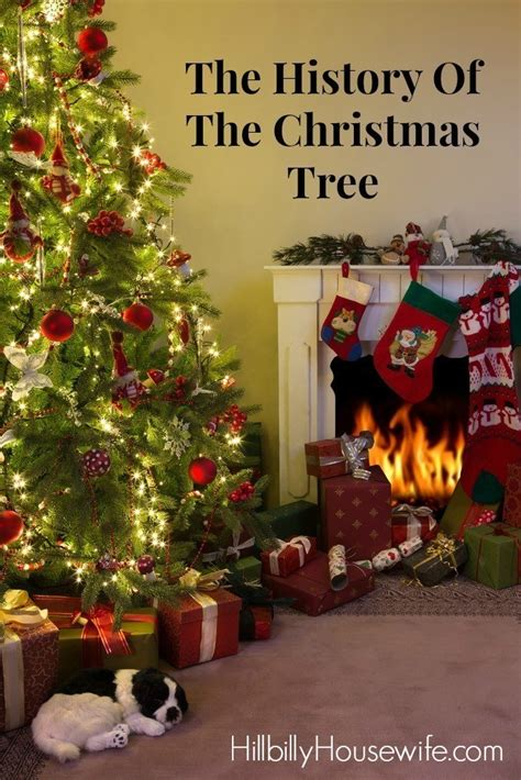 the history of the christmas tree hillbilly housewife