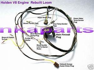 Holden Hq Wiring Harness