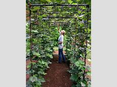 Amazing Vertical Gardening Ideas ~Family Food Garden