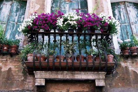 terrazzi in fiore piante da balcone foto tempo libero pourfemme
