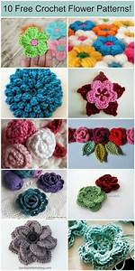 20 Free Patterns For Crochet Flowers  U0026 What To Do With