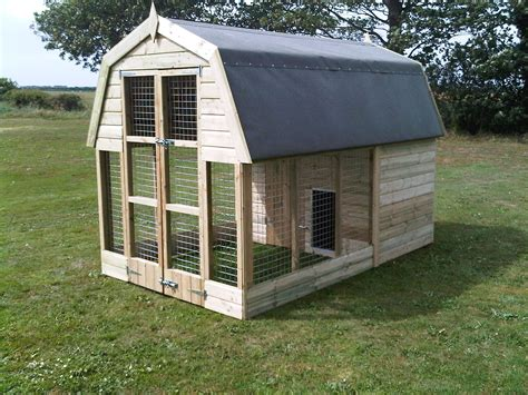 modern dog house design