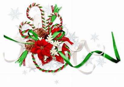 Christmas Winter Ornament Eve Background Frame Holidays