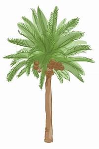 L.A.'s palm trees are dying and it's changing the city's ...