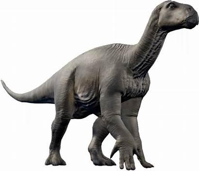 Iguanodon Evolution Jurassic Fandom Park Transparent Dinosaur