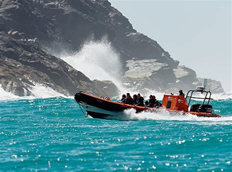 Boat Trip Cornwall by Boat Trips Tours In Cornwall Uk Sea Safari