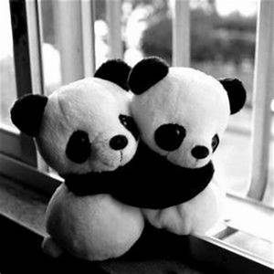 Tumblr Cute Black and White Photography | Nature ...