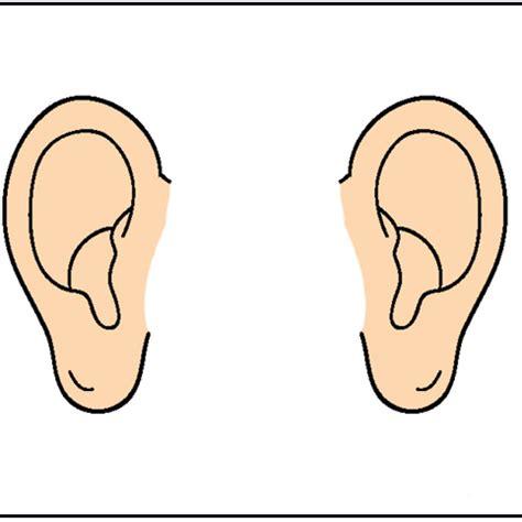Ear Clip 64448066 An Illustration Of A Human Ear Part Clipart