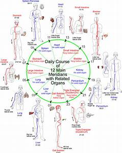 Acupressure   Acupressure Points  Reflexology  Meridians