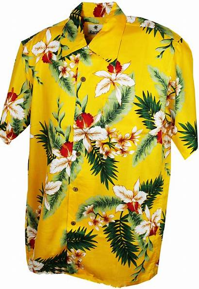 Hawaiian Yellow Shirt Zoom Cayo Mouseover Above