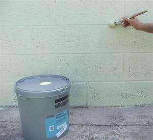 peindre un mur exterieur en 11 etapes galerie photos d With peinture crepi exterieur parpaing