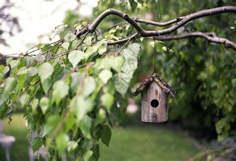 Trucs Et Astuces Pour Décorer Un Jardin  Blog Decoration