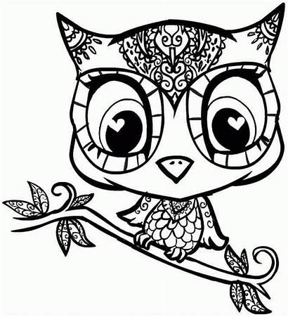 Coloring Animal Pages Teens Sheets Printable Owl