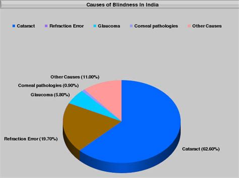 what causes blindness causes of blindness in india medindia