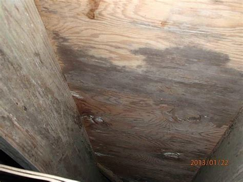 Crawl Space Repair   Deal Island, Maryland   Crawlspace