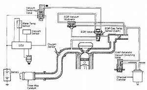 Corolla 4afe Wiring Diagram
