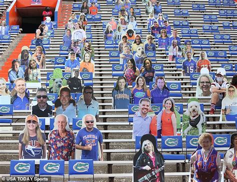 Florida-LSU football game is postponed after 19 Gators ...