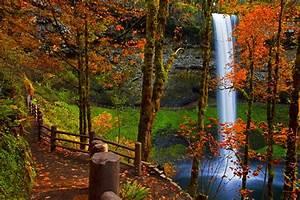 Waterfall and trees 3d desktop 4k wallpaper