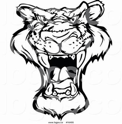 Panther Face Roaring Vector Royalty Drawing Logos