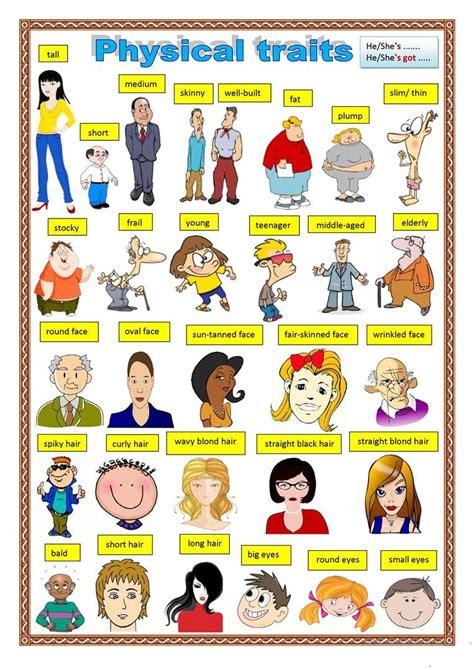 physical description  images english vocabulary